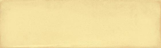 Монпарнас жёлтый 8,5*28,5