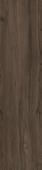Сальветти коричневый обрезной 30*119,5