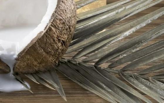 декор 4 welness 25*40 Golden Tile 101341