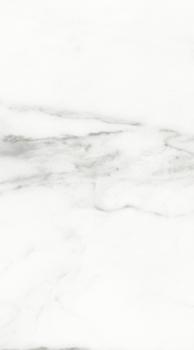 1045-0115 плитка настенная каррарский мрамор универсальный 25х45 LASSELSBERGER | LB Ceramica