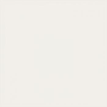 Керамогранит L4416-1Ch White - Loose 10х10 см