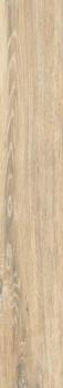 BRIGANTINA BG02 19.4x120 Непол.Рект.