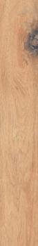 BRIGANTINA BG01 19,4x120 Непол.Рект.