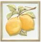 Декор Капри лимончики 9,9*9,9