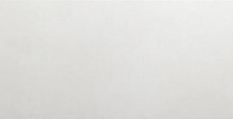 Керамическая плитка для стен AltaCera Antre White 24,9x50
