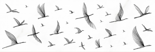 Настенная вставка Meissen Keramik Elegance птицы белый 25x75 EG2U051
