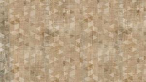 IDALGO Гранит Вуд Эго Декор Беж LR 120x19,5 керамогранит