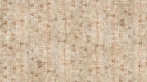 IDALGO Гранит Вуд Эго Декор Светло-бежевый SR 120x19,5 керамогранит
