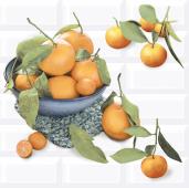 Плитка AZORI Вог 405x402 Citrus 2 (2 шт) панно