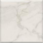 5287 | Стемма белый