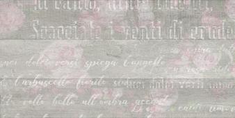 Abba flower серый 30*60