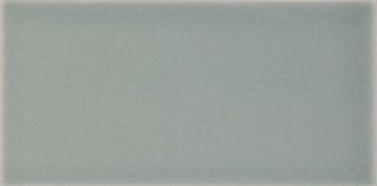 Плитка Liso Devon Fern Brillo 10x20