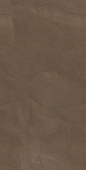 Плитка Pulpis Brown W M 31x61 NR Glossy 1