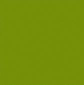 Relax green / Релакс зеленый 40*40