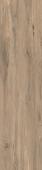 Сальветти капучино обрезной 30*119,5