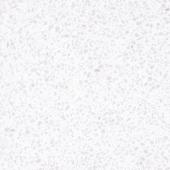 Керамогранит LeeDo Terrazzo bianco MAT 60x60 см